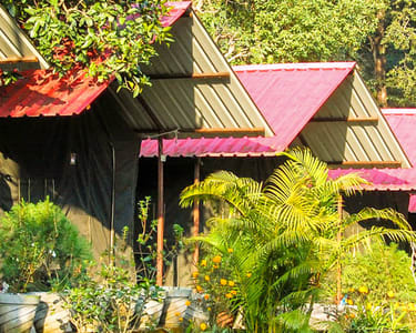 Rajaji National Park Camping, Book Now @ ₹900 Only!