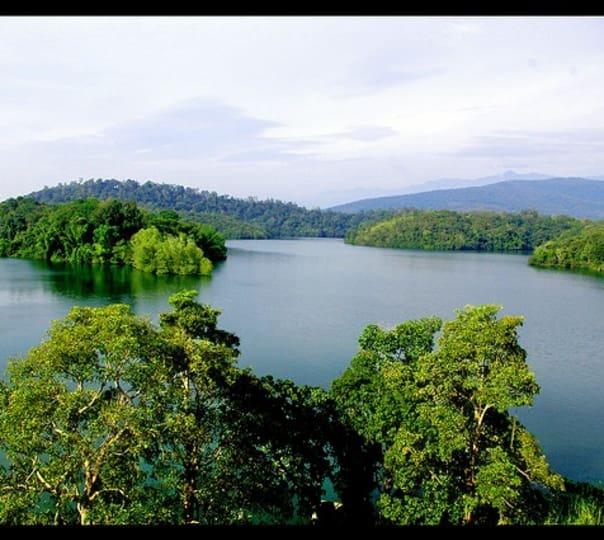 Discover Kerala