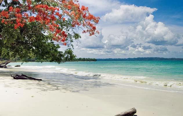 1502974018_andaman_honeymoon_beauty.jpg