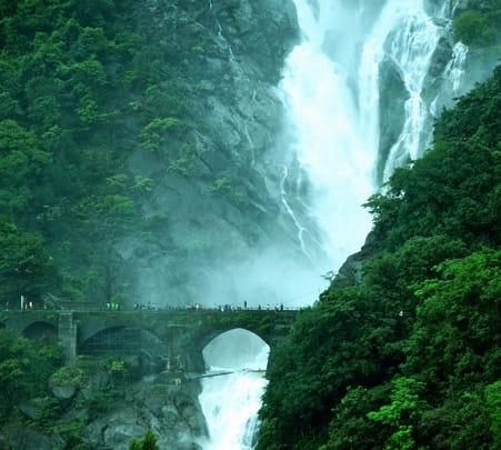 Dudhsagar Waterfalls Trek from Bangalore