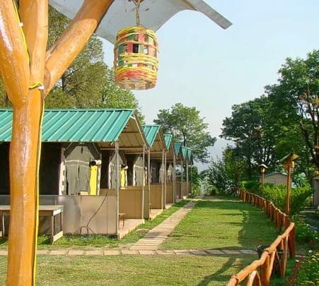 Nature Camp Stay in Shimla with Activities