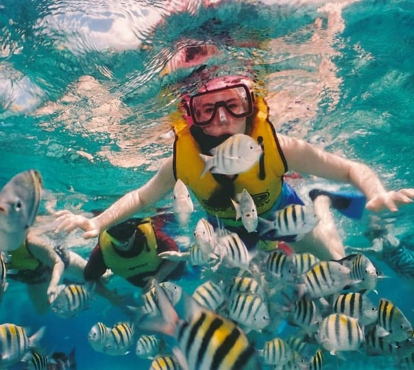 Snorkelling Tour in Maldives