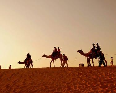 Overnight Camel Safari in Pushkar