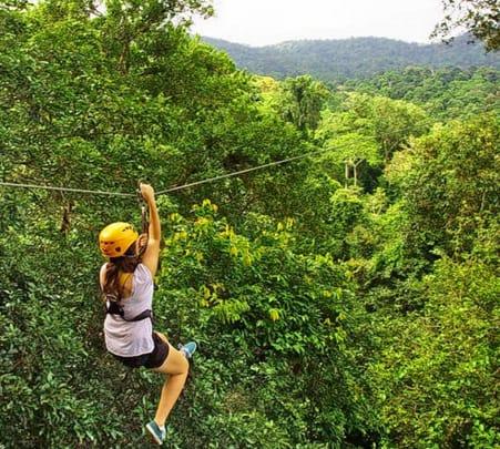 Flight of the Gibbon Chiang Mai - Flat 13% off