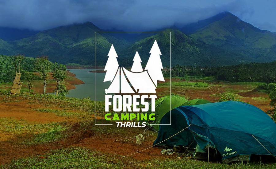 1517381395_forest-camping-thrills.png