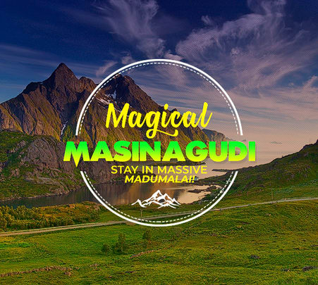 Homestay With Camping in Masinagudi