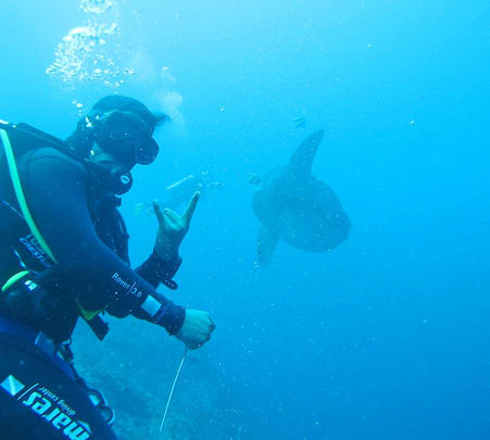 Scuba Diving with Manta Rays in Nusa Penida