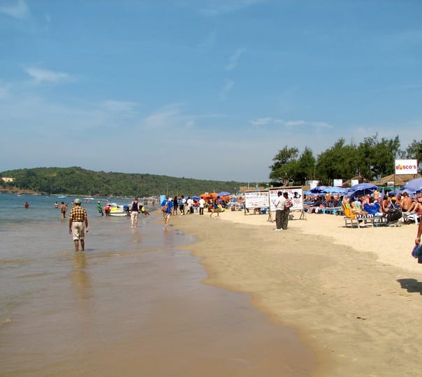 Forts, Beaches Sightseeing and Dolphin Watching Tour at Goa
