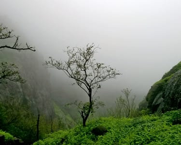 Trek to the Prabalgad Fort @ 820 Only
