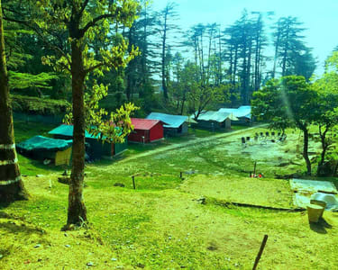 Camping Amidst Deodar Forest in Mussoorie Flat 39% off