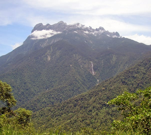 Kinabalu National Park and Poring Hot Spring Tour in Malaysia