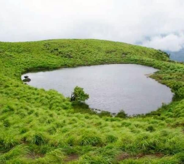 Chembra Peak Trek and Waterfall Visit