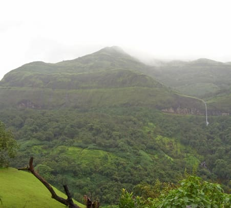 A Night Trek to Tamhini, Near Pune