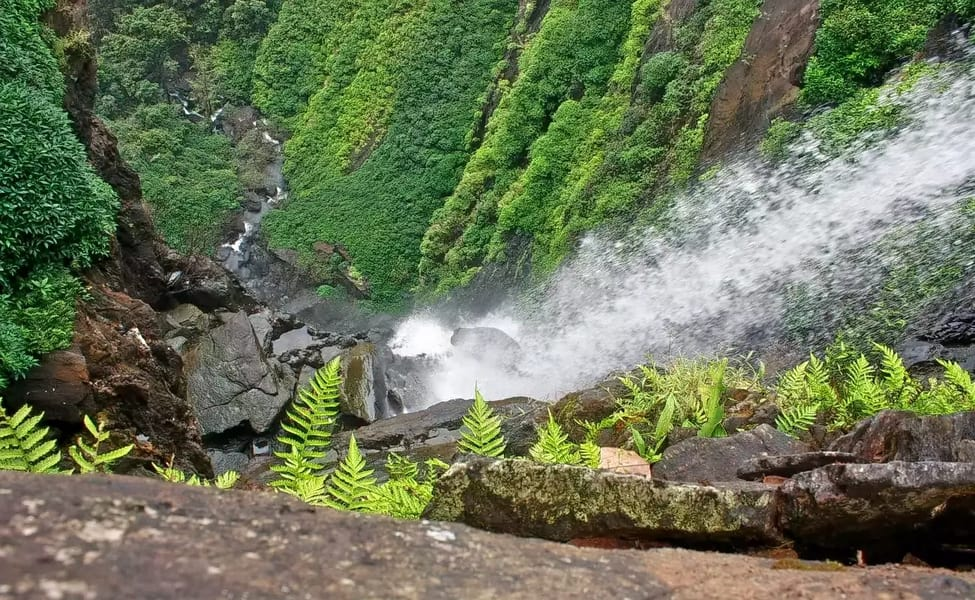 agumbe trekking with waterfall visit thrillophilia