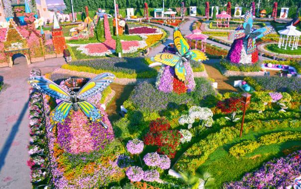 1562653829_dubai-miracle-garden.png