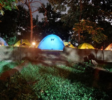 Stay in a Jungle Camp in Pench, Madhya Pradesh