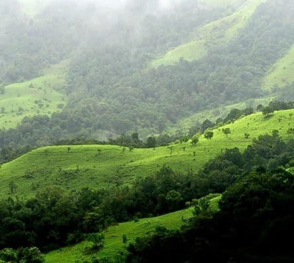 Kudremukh Trekking Trail, Chikmagalur