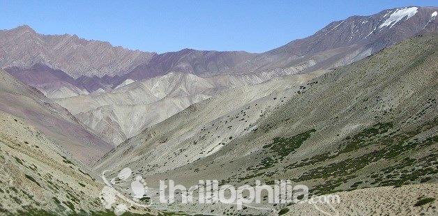 Zingchen_ladakh.jpg