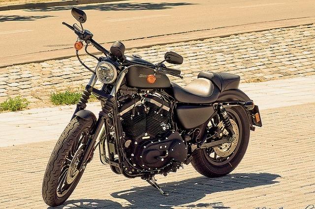 Harley_davidson_883_iron_7.jpg