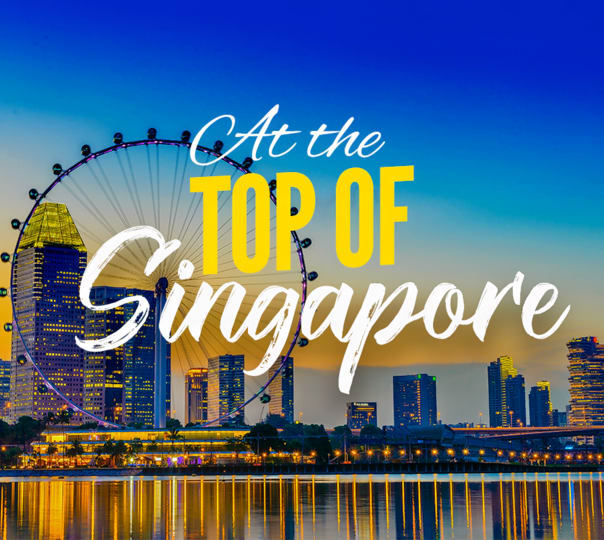 Singapore Flyer Tickets with City Tour