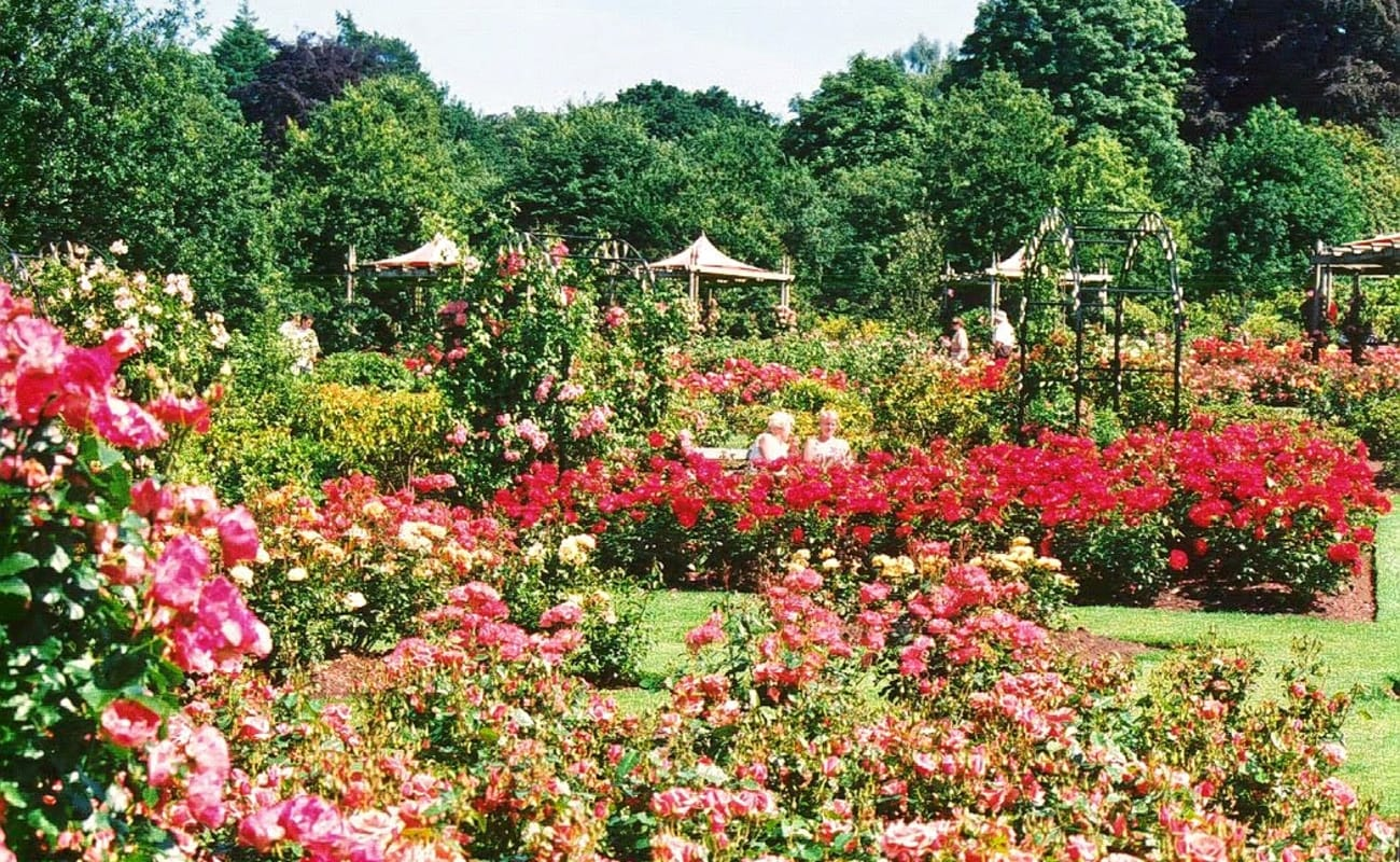 Day Tour To Rose Garden And Thai Cultural Show At Sampran