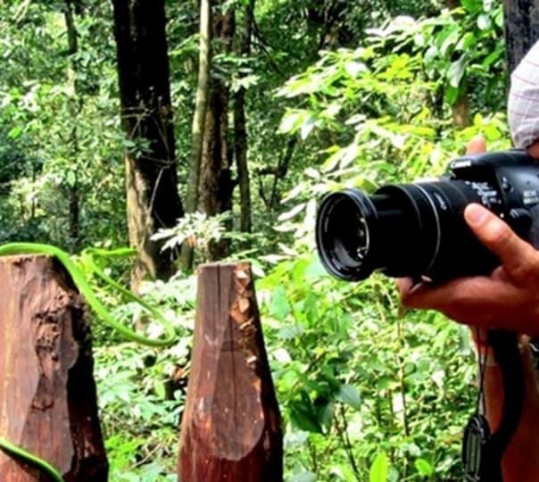 Nature Photography, Sirsi