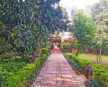 Jim Corbett Wildlife Safari and Resort Stay