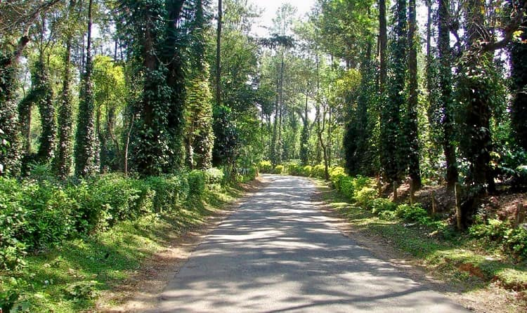 Best Places to Visit in Coorg 2019 (21596 Reviews)