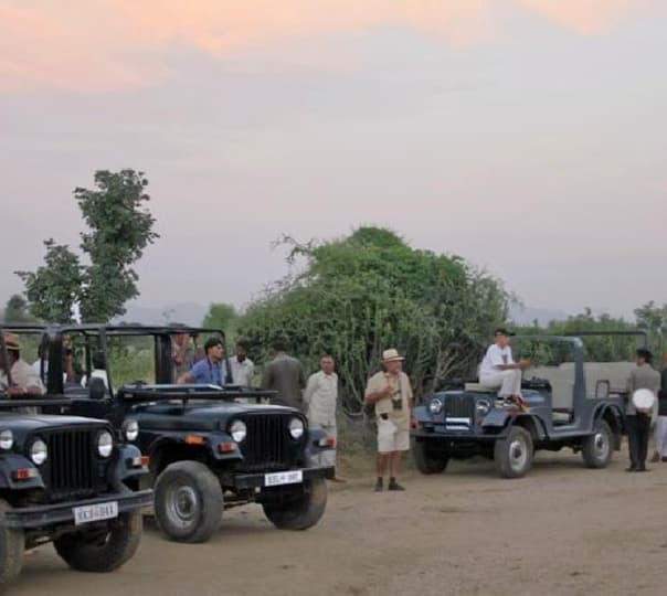 Sunset Champagne and Jeep Safari in Rajasthan