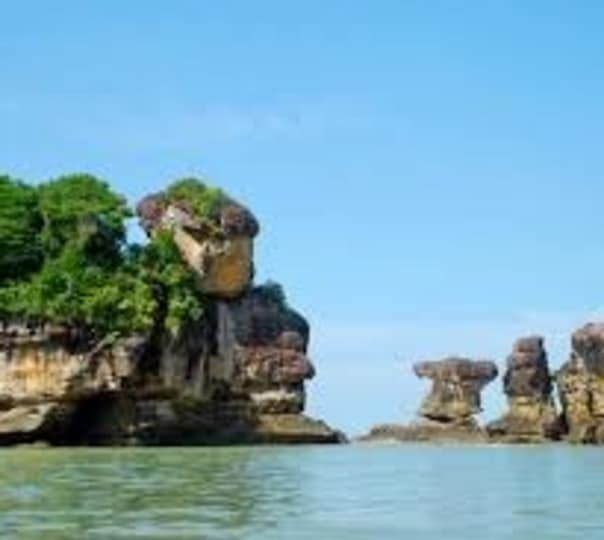 Tour to Bako National Park in Malaysia