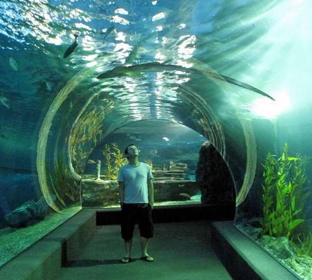 Tour of Sea Life Ocean World, Bangkok