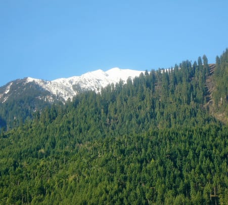 Shimla Manali Chandigarh Tour from Delhi