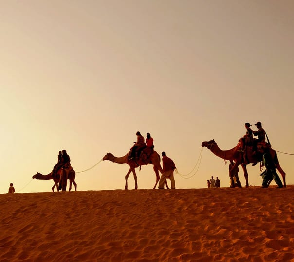 Overnight Camel Safari in Pushkar