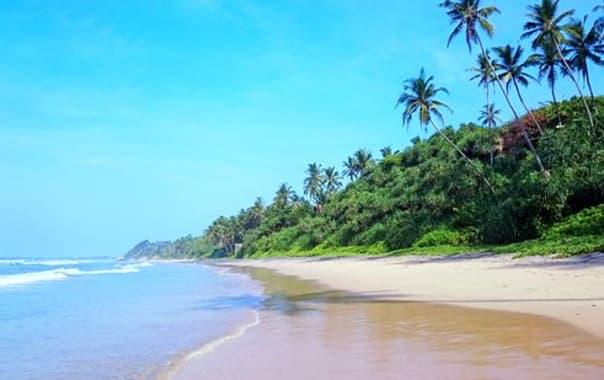 1562164866_medawatta-beach-near.jpg