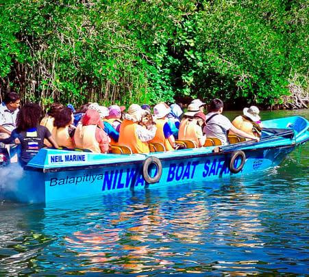 Balapitiya River Safari Tour - Flat 15% off
