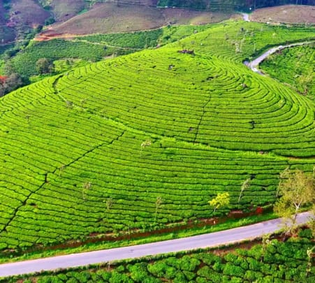 Cochin to Munnar Airport Transfers Flat 28% off