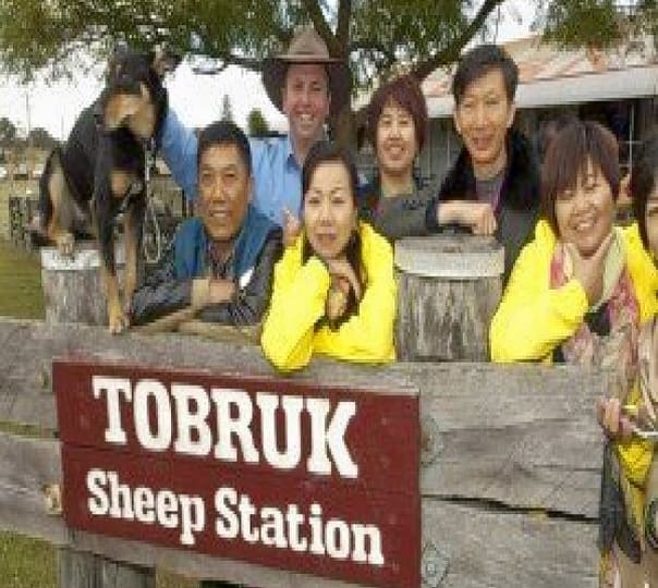 Explore the Tobruk Sheep Station