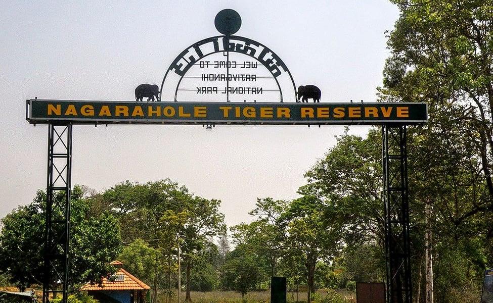 Wildlife Safari At Nagarhole National Park In Kabini