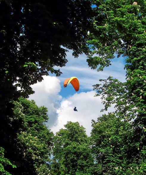 1512193988_paraglider-1973020_1920.jpg