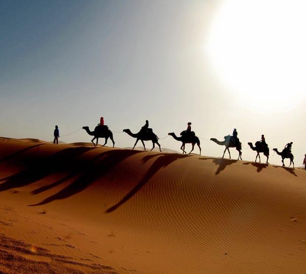 Dune Desert Safari in Dubai