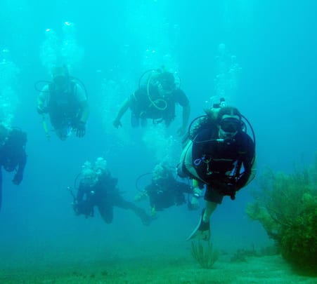 Scuba Diving at Sao Gorge Island in Goa