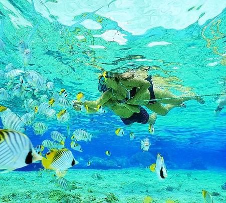 Pulau Payar Marine Park Tour