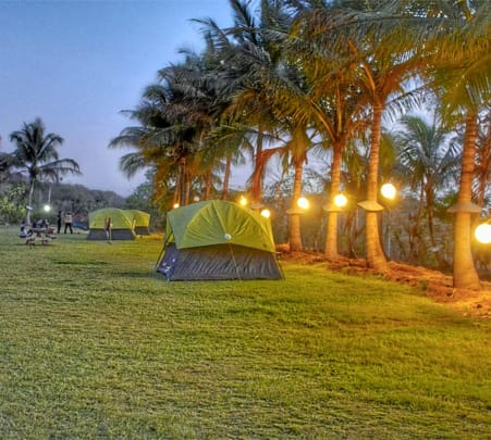 New Year and Christmas Special Camping at Karnala