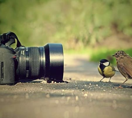Wayanad Photography Tour