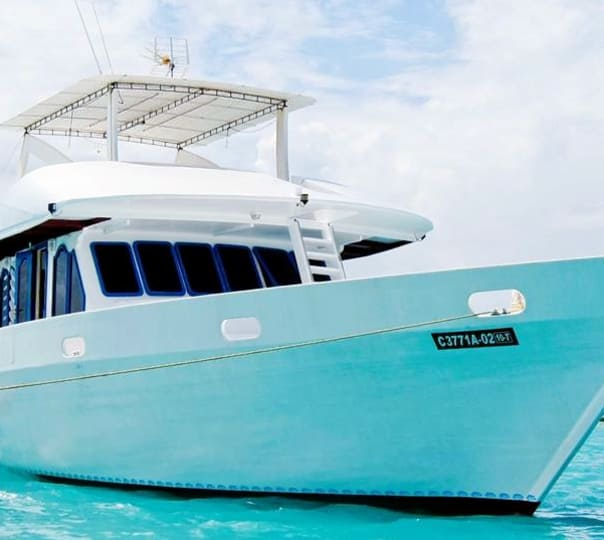 Dhoni Charter Cruise in Maldives