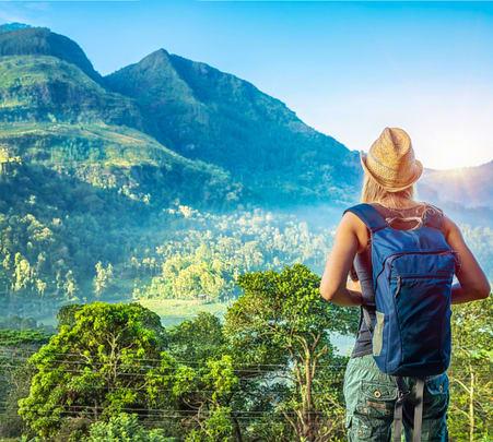 7 Days Sightseeing Tour of Sri Lanka - Flat 22% off