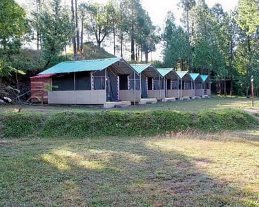 Nature Camping in Shimla