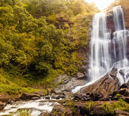 Chikmagalur Sightseeing Full Day Tour - Flat 34% Off
