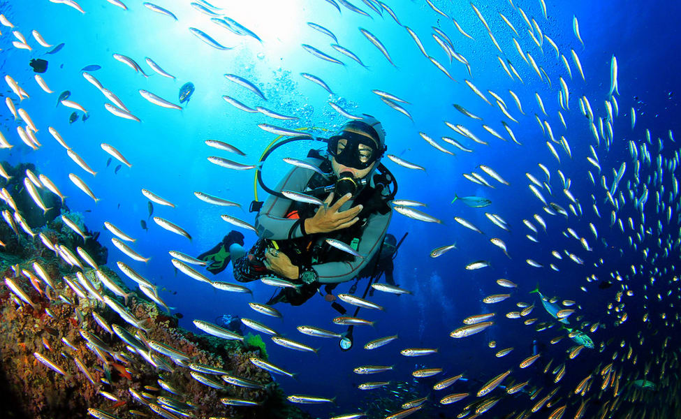 Scuba Diving In Pondicherry | Book @ Flat 20% Off
