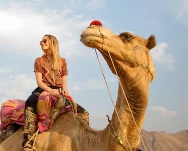Camping with Camel Safari in Pushkar